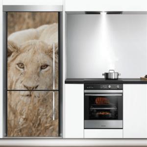 # Αυτοκόλλητο ψυγείου με λιοντάρι - Sticker Box