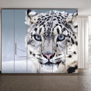 # Αυτοκόλλητο ντουλάπας λεοπάρδαλη - Sticker Box