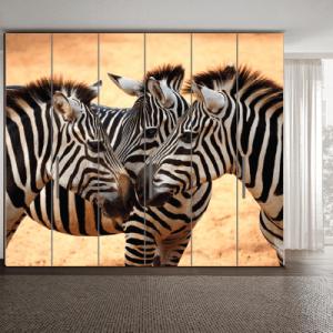 # Αυτοκόλλητο ντουλάπας με ζέμπρα - Sticker Box