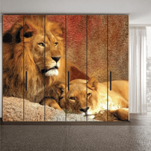 # Αυτοκόλλητο ντουλάπας με λιοντάρια - Sticker Box