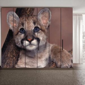 # Αυτοκόλλητο ντουλάπας με μωρό τίγρη - Sticker Box