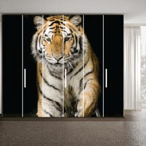 # Αυτοκόλλητο ντουλάπας με τίγρη - Sticker Box