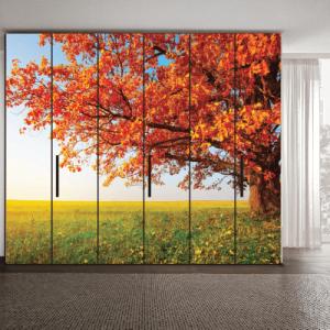 # Αυτοκόλλητο ντουλάπας δέντρο το φθινόπωρο - Sticker Box