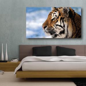 # Πίνακας με τίγρη - Sticker Box