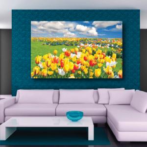 # Πίνακας κάμπος με λουλούδια - Sticker Box