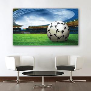 # Πίνακας με μπάλα στο γήπεδο - Sticker Box