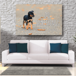 # Πίνακας με αδέσποτο σκύλο - Sticker Box