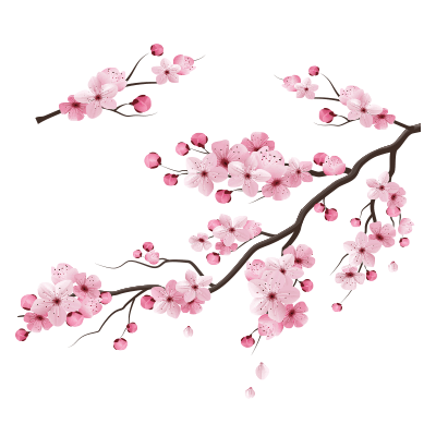 Αυτοκόλλητο κλαδιά με ανοιξιάτικα λουλούδια