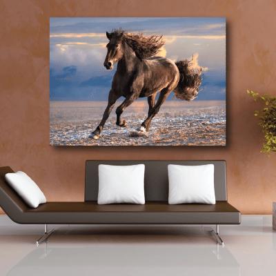 # Πίνακας με καφέ άλογο - Sticker Box