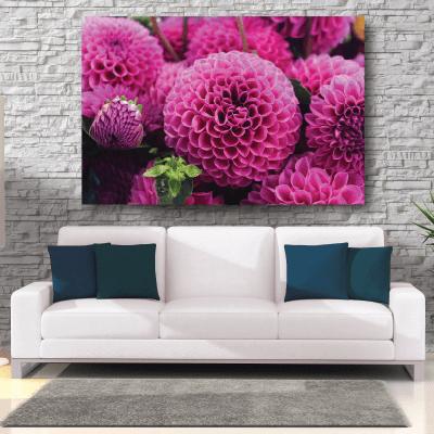 Πίνακας με λουλούδια ροζ ντάλιες