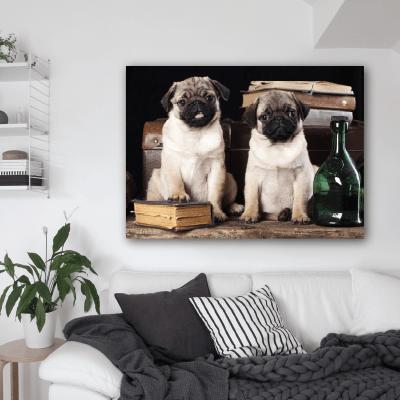 # Πίνακας με σκυλάκια αδελφάκια - Sticker Box