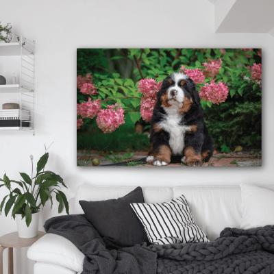 # Πίνακας με σκυλάκι στα λουλούδια - Sticker Box
