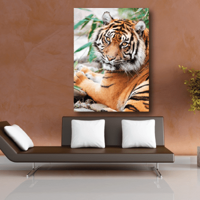 Πίνακας με τίγρη