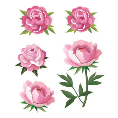 Αυτοκόλλητο τοίχου με λουλούδια παιώνιες (σετ 2)